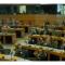 Il mio intervento alla conferenza europea per la libertà di ricerca scientifica